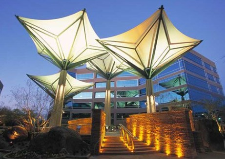 Lamp Tensile Structures
