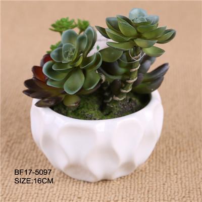 Home Garden Decoration Artificial Succulent