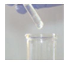 Tri Phenyl Phosphite Chemical