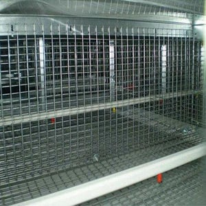 Durable Poultry Wire Cages