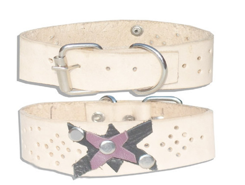Hand Made Designing Leather Dog Collar