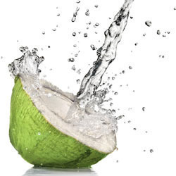 Tender Coconut Water Powder in  Alandur