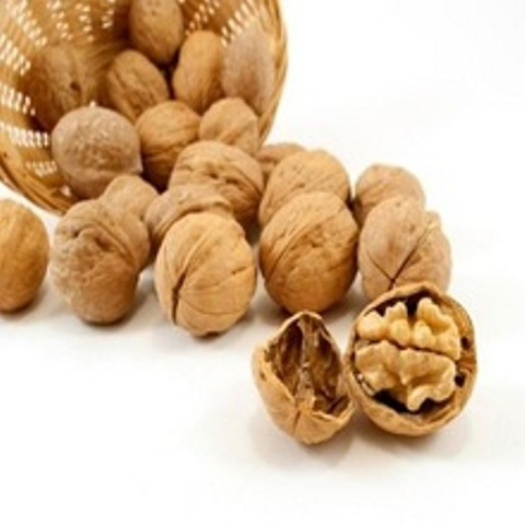 Kashmiri Walnuts in  New Area
