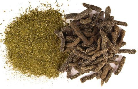 Pipli Dry Extract