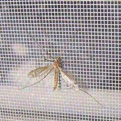 White Durable Indoor Mosquito Net