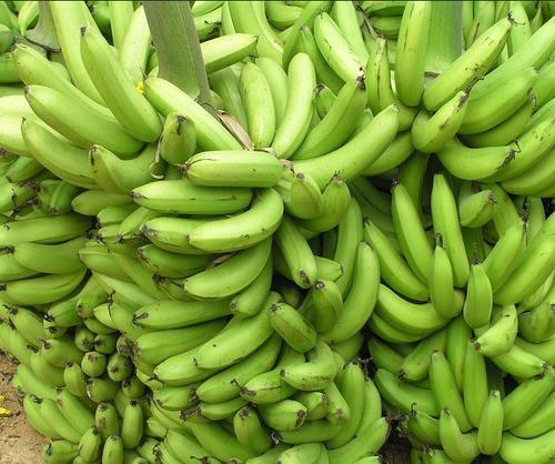 Banana In Hyderabad, Banana Dealers & Traders In Hyderabad, Telangana