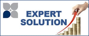 Expert Financial Consultant Services