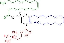 High Quality Phosphatidylcholines (Pc)