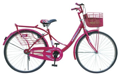 Heavy Duty Ladies Bicycle