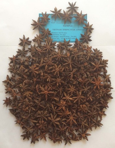Natural Spring Star Anise