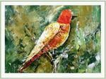 Attractive Colors Bird Painting