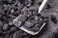 Top Quality Black Cooking Coal