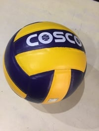 Single PC Leather Pasted Good Quality COSCO Volleyballs