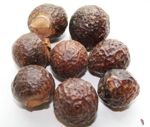 Sapindus Mukorossi Soap Nuts