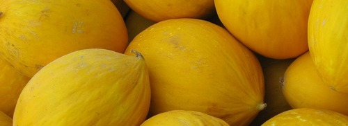 Fresh And Nutrition Rich Melons