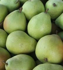 Fresh And Sweet Pears