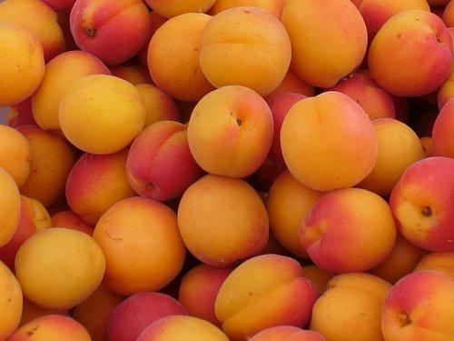 Fresh Sweet Round Apricots