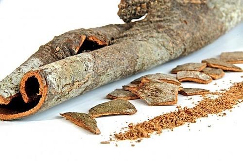 Fresh Quality Cinnamon Sticks