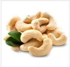 Top Quality Organic Cashew Nut