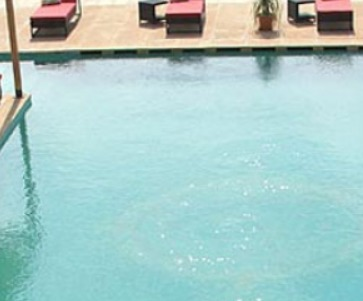 Service Provider of Swimming Pool Accessories from Udaipur ...
