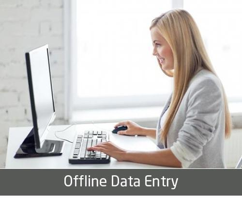 Offline Data Entry Service