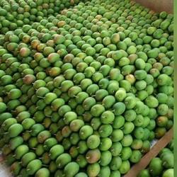 Pure And Fresh Mangoes