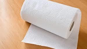 Disposable Simple Paper Towel