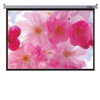 Motorized Projection Screen in  Karawal Nagar