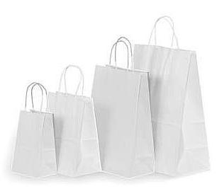 White Craft Paper Bag