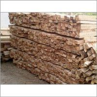 Best Quality Jungle Wood