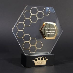 Acrylic And Metal Awards With Golden Print