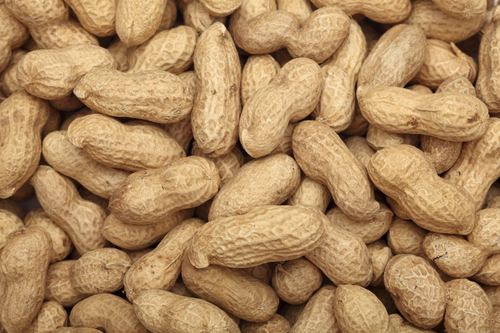 High Grade Whole Groundnuts