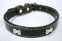 High Quality Pet Collars