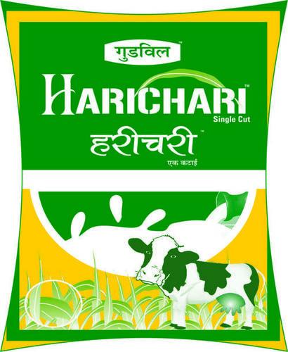 Single Cut Sorghum (Goodwill Harichari)