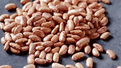 Fresh Organic Pinto Beans