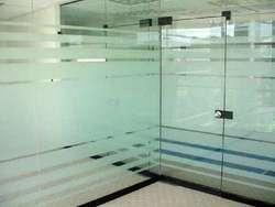 Beautiful Glass Partition Door