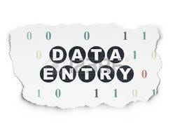 Online and Offline Data Entry Projects Service