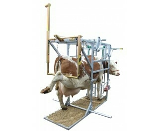Industrial Cattle Hoof Trimmer