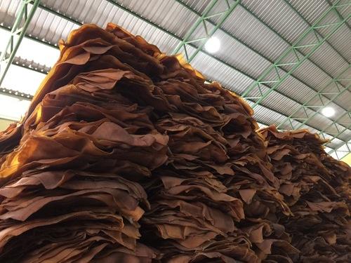 Natural Rubber Ribbed Smoked Sheets