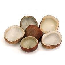 Shell Dried Coconut Copra