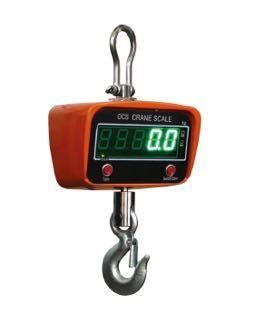 1-Ton Crane Scale