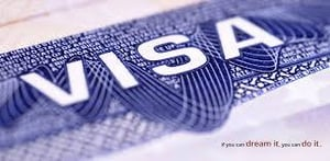 Overseas Placement And Immigration Consultants Service