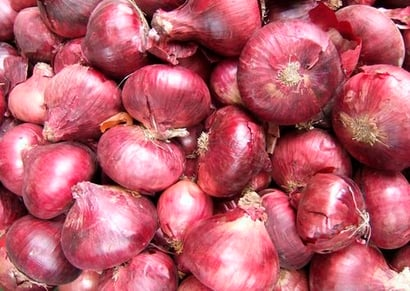Fresh Red Onion With Packaged
