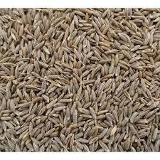 100% Pure Cumin Seeds