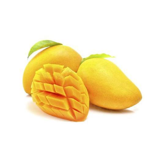 Mango In Rajkot, Mango Dealers & Traders In Rajkot, Gujarat