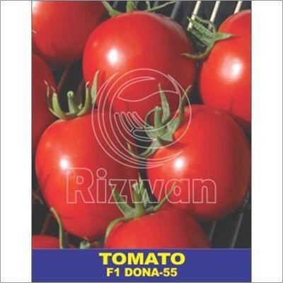 Tomato Seeds F1 - Dona No 55