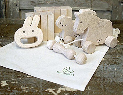 Educational Wooden Baby Toy Set