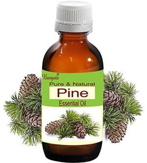 Pure and Natural Pine Essential Oil