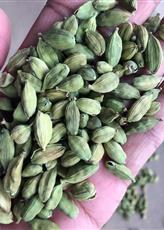 Machine Clean Indian Cardamom