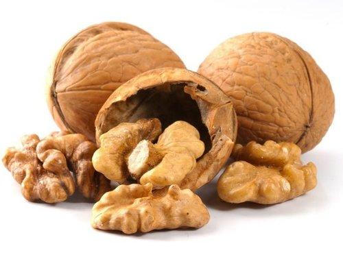 Pure Quality Iranian Walnut Kernel